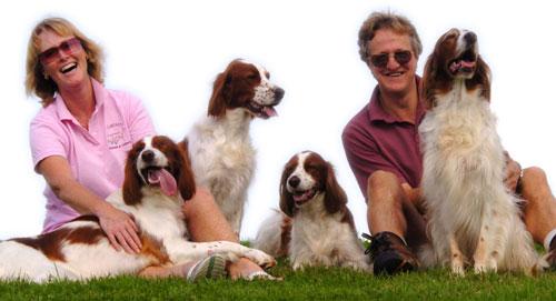 Towsers Luxury Dog Boarding Kennels Devon